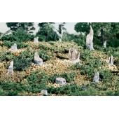 Woodland Scenics S31 Cut Stumps 14/Pkg
