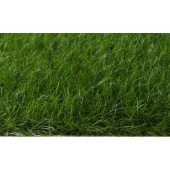 DSM Dark Green High Quality Static Grass Looks Real 21.6 cu in (353 cu cm)