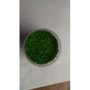 Blended Turf -Dark Green Grass for Approx. 3 square feet In Plastic Container
